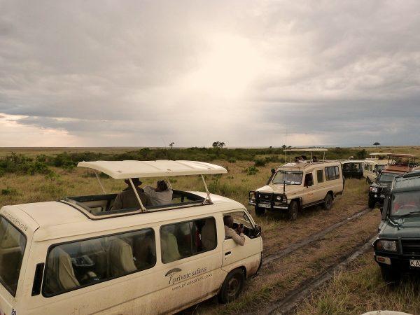 Un safari au Masai Mara : la traque se fait à bord de 4x4