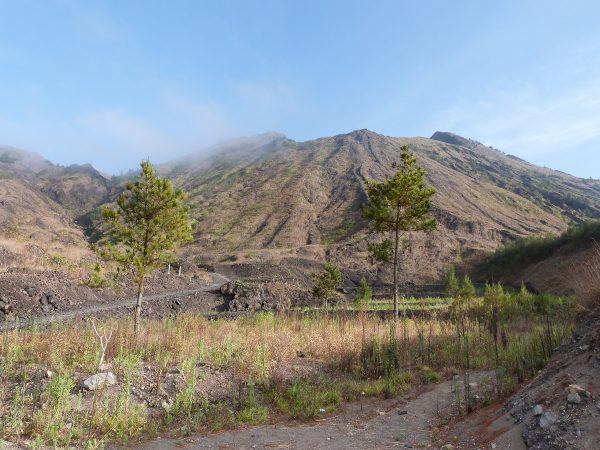 Le Mont Batur à Bali : la vue sur le chemin de randonnée