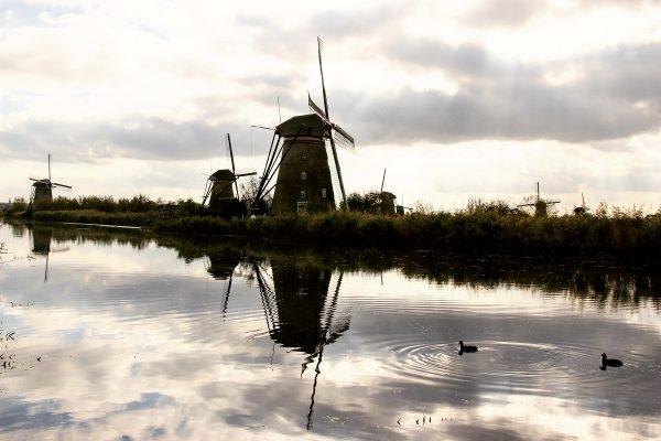 Les moulins de Kinderdijk au bord de l'eau