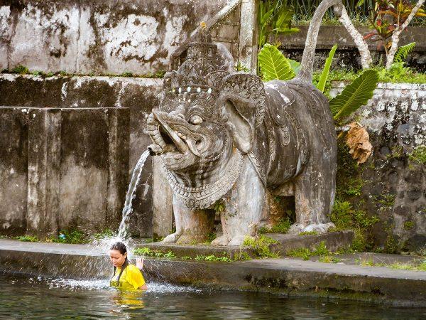 La baignade dans les eaux d'un bassin du palais de Tirta Gangga