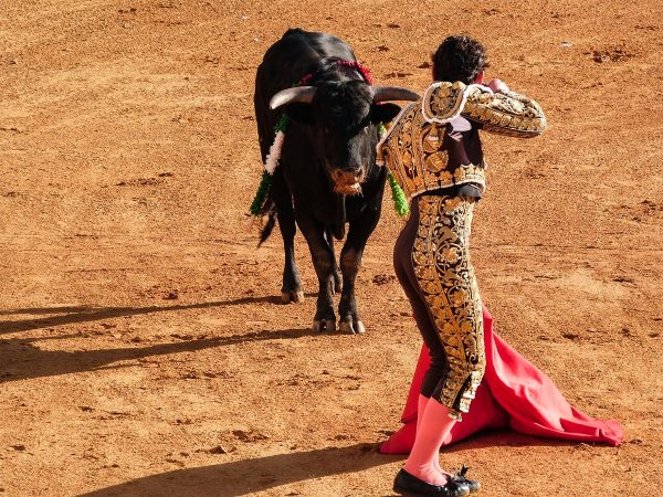 La corrida, une tradition en Andalousie