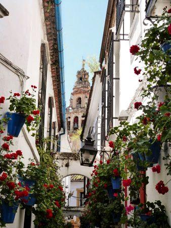 Dans les rues fleuries de Cordoue