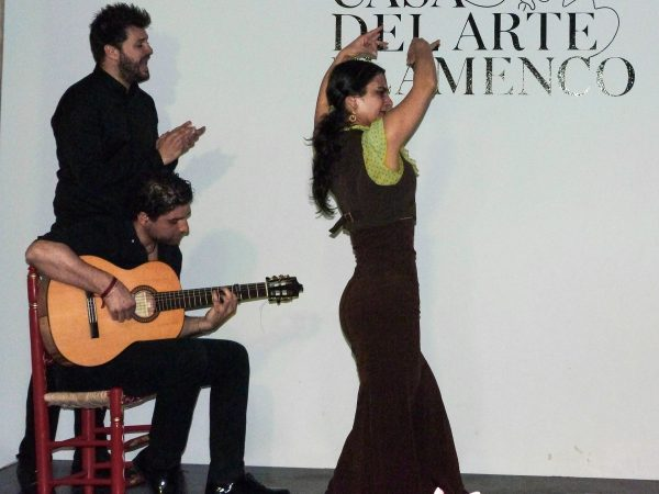 Spectacle de flamenco à Grenade