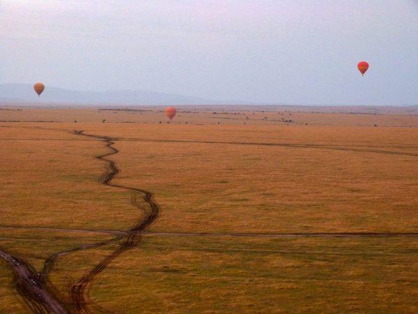 Les montgolfières au-dessus du Masai Mara