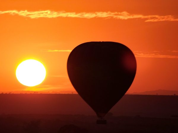 Le survol du Masai Mara en montgolfière