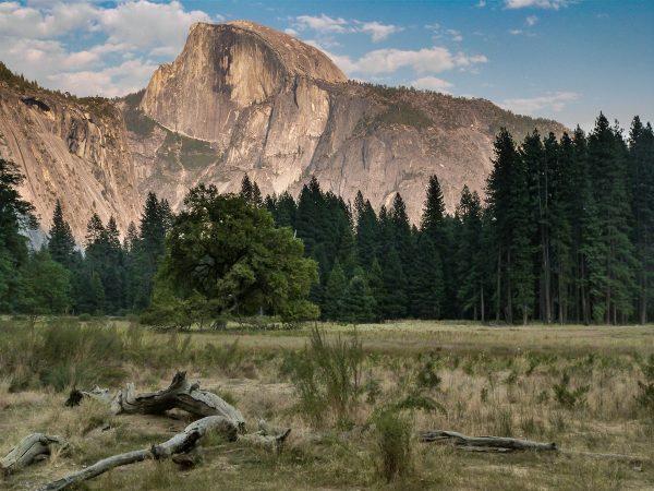 Le parc de Yosemite en septembre : de belles couleurs mais quelques déceptions !