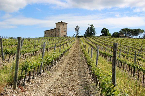Carnet de voyage en Toscane et Venise : un paysage de Toscane