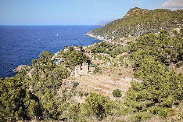 Les cultures en terrasse sur les flancs de la Serra de Tremuntana à Majorque
