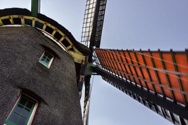 Les ailes d'un moulin à huile à Zaanse Schans