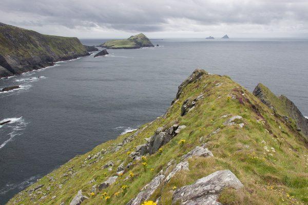 La vue au loin sur les îles Skellig, et notamment Skellig Michael à droite