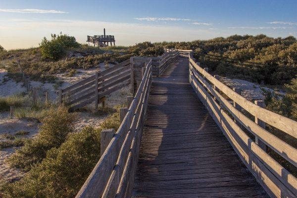 Un chemin d'accès dans les dunes du Touquet