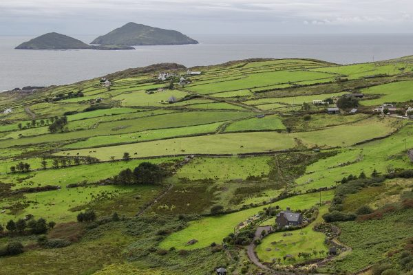 Un panorama du Ring of Kerry entre Caherdaniel et Waterville