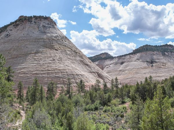 Le Checkboard Mesa, formation rocheuse en sortie du Zion National Park