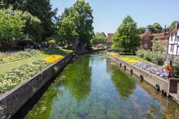 Dans les jardins de Canterbury