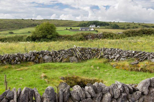 Les murs de pierres, caractéristiques de la région du Burren