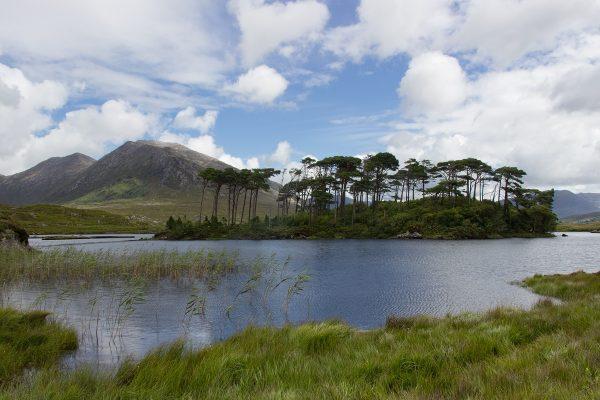 La vue sur Pines Island, dans le Connemara en Irlande