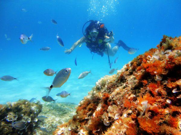 Plongée sous-marine près de Palma de Majorque