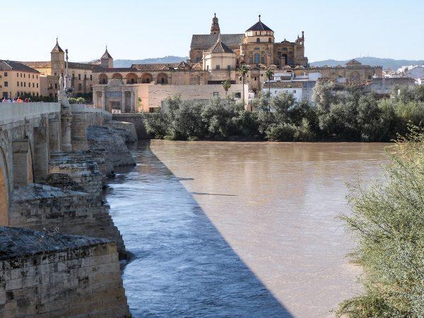 Vue sur la cathédrale de Cordoue depuis la rive du Guadalquivir