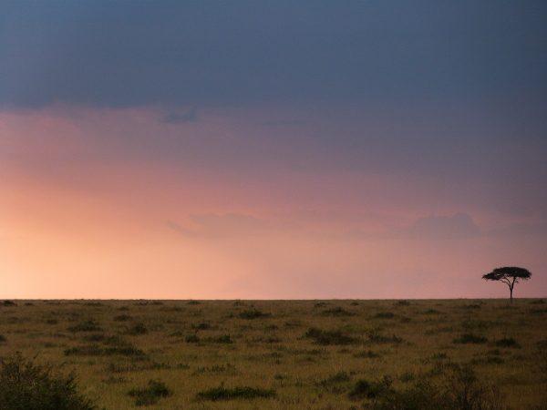 Coucher de soleil sur le Masai Mara