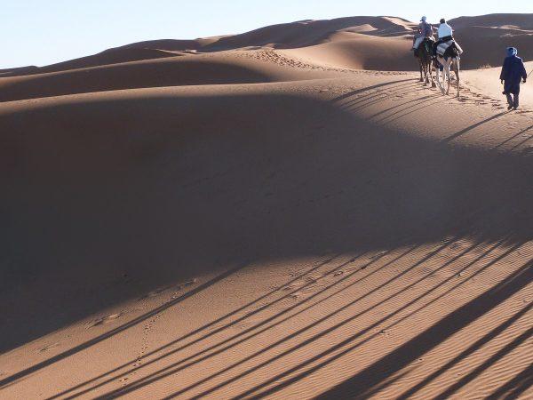 Balade en dromadaire dans les dunes de merzouga