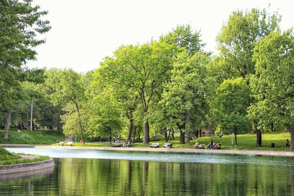 Un lac dans un parc à Montreal