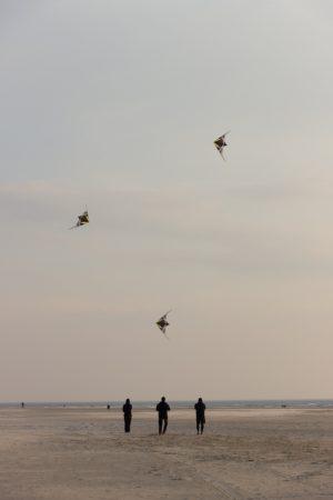 La pratique du cerf-volant sur la plage de Berck : ici l'entraînement avant les rencontres internationales