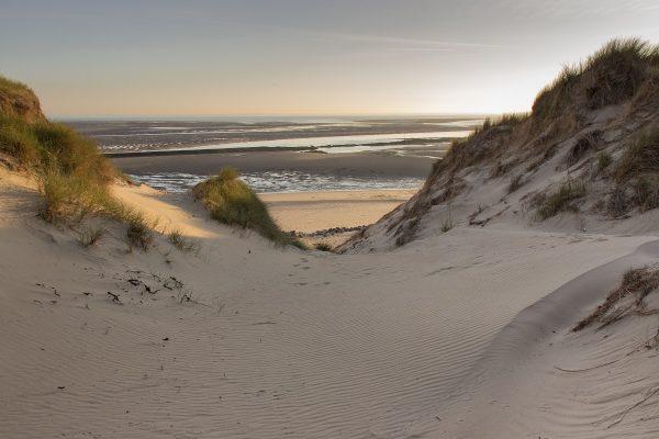Dans les dunes de la baie d'Authie, à Berck sur mer