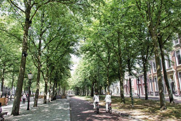 L'avenue du Lange Voorhout à La Haye