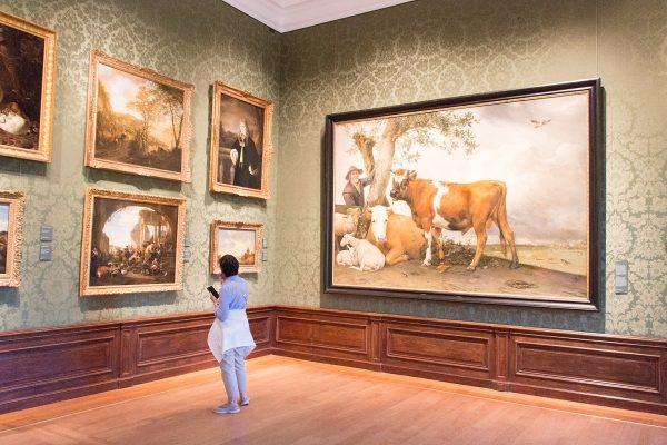 Le musée Mauritshuis et le tableau du Jeune Taureau de Potter