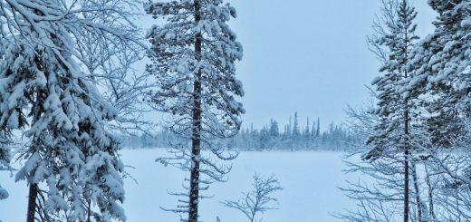 Les paysages enneigés en Laponie