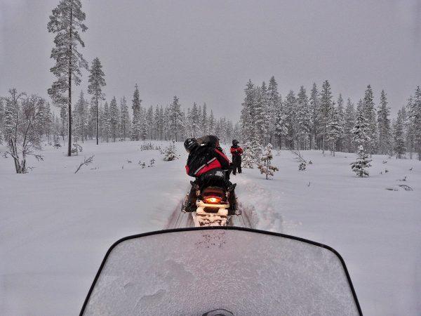 La vue depuis un motoneige en Laponie