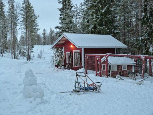 Cabane dans la forêt en Laponie