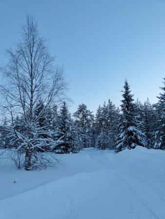 Un paysage enneigé en Laponie
