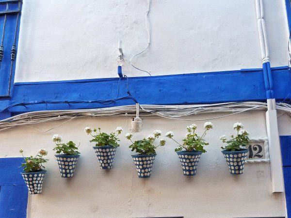 Pots de fleurs dans une rue de Cordoue