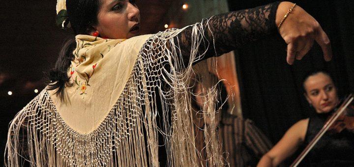 Assister à un spectacle de flamenco en Andalousie