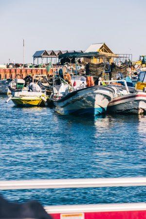 Le petit port de l'ilha de Culatra
