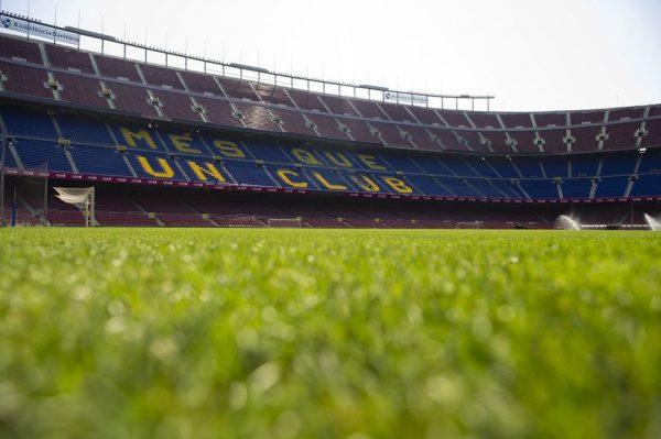 La pelouse du Camp Nou à Barcelone