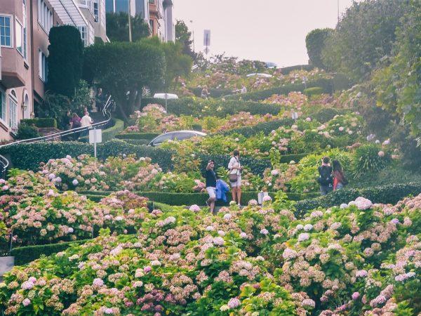 La Lombard Street à San Francisco