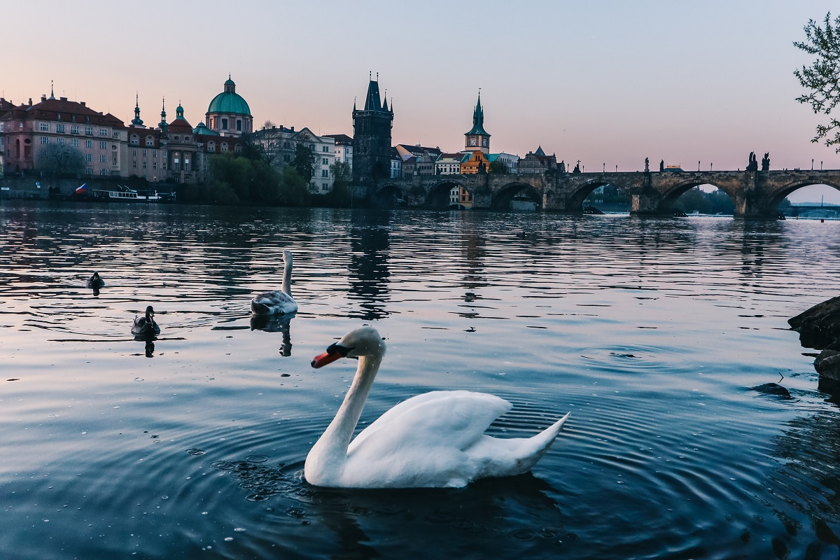 Le fleuve Vltava au lever de soleil