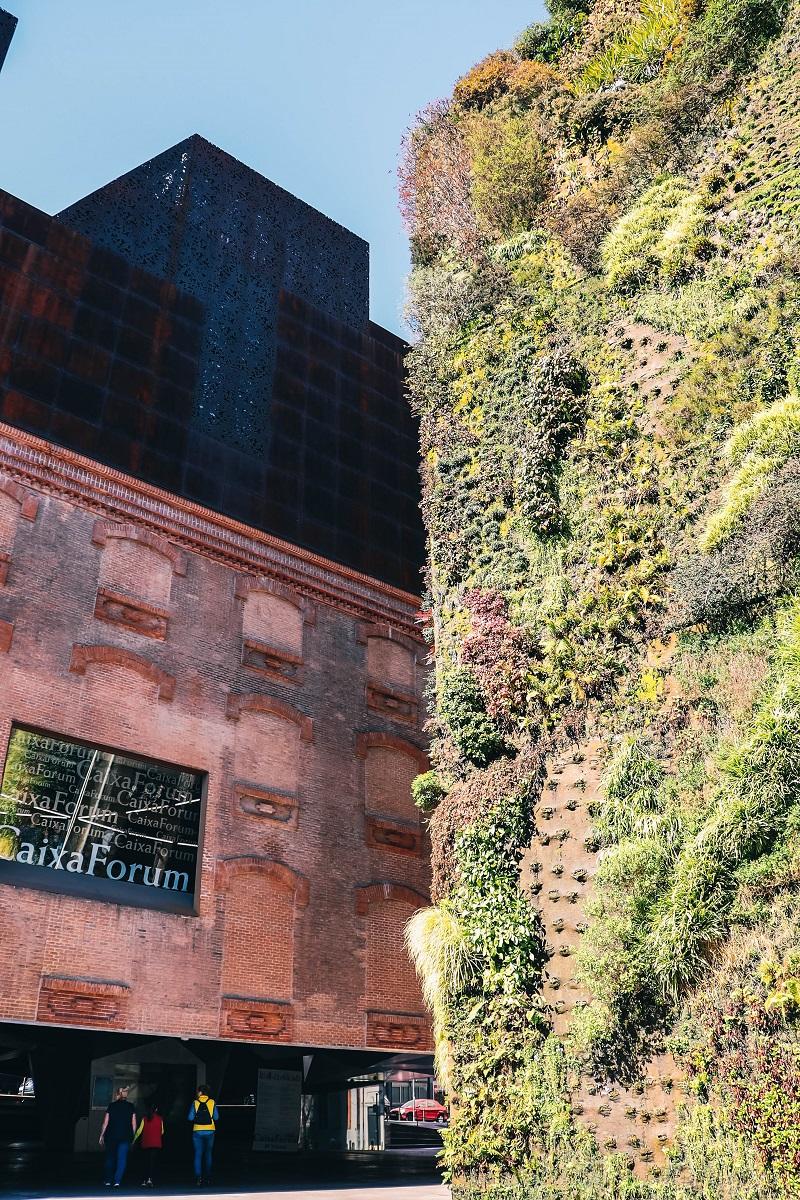 Mur végétal à Madrid