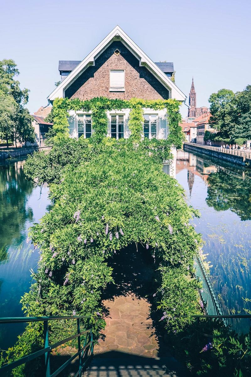 Maison avec allée de verdure à Strasbourg