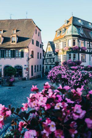 Visite de Barr en Alsace