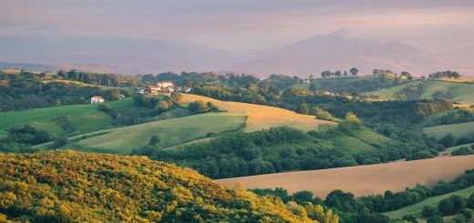 Visiter le Pays Basque : entre littoral et campagne de l'arrière-pays