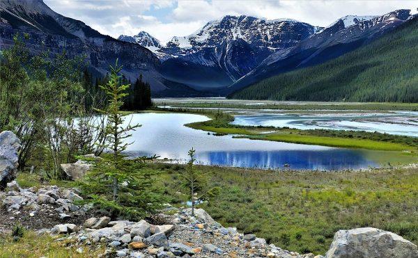 Dans le parc national de Jasper au Canada